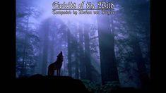 Celtic Music - Spirits of the Wild...By Artist Adrian Von Ziegler...