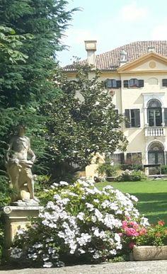 Villa Selmi - giugno
