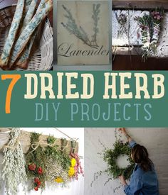 DIYREADY.com is bringing you tutorials on herb drying techniques herbs herb drying how to dry herbs herb storage and DIY crafts using dried herbs | diyready.com/diy-projects-things-you-can-make-using-dried-herbs/