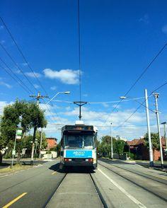 Melbourne trams 🚋 in peak hour #thisismelbourne  #trams #melbourne #drivehome #peakhour #blueskies #tramlife #melbournelifelovetravel #sunnyday #summer #stkilda