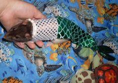 mermaid costume for pet rat