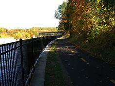 bike path along the canal
