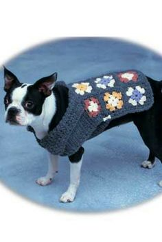 [Free Crochet Pattern] Simple And Beautiful Dog Sweater made of Grannies