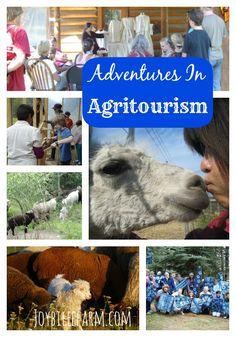 Family Activities in the Berkshires