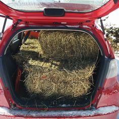 """Oh what you can do with a Honda Fit, back seats down and six bales of hay in the back, and one on the passenger seat in the front. All for my daughters horse. #Honda #Hondafit #horses #hay #haybales"" Photo taken by @drinkkoba on Instagram, pinned via the InstaPin iOS App! http://www.instapinapp.com (02/05/2015)"