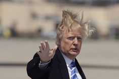 12 Photos Of Trump Boarding Air Force One On A Very Windy Day Donald Trump Hair, Donald Trump Twitter, Air Force One, Air Force Bases, Windy Day, The Thing Is, People, Photos, Cartoons