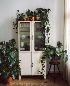 We have a tiny kitchen so we need to store of our kitchenware in the living room. We have a tiny kitchen so we need to store of our kitchenware in the living room. Hanging Plants, Indoor Plants, Indoor Outdoor, Indoor Gardening, Outdoor Living, Vintage Kitchen Cabinets, Vintage Garden Decor, Metal Wall Decor, Inspired Homes