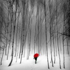 """""""Do not go where the path may lead, go instead where there is no path and leave a trail.""""   ― Ralph Waldo Emerson"""