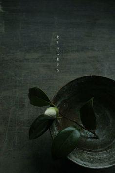 Camellia In Katsumi Machimura's Pottery