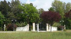 Matrimonio in villa #romantic #beautiful #padova #venice #gardening #matrimonio #rovigo #ferrara # coppie#wedding #love #amazing #statue #green #botanical #nature