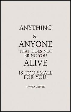 david whyte | Tumblr