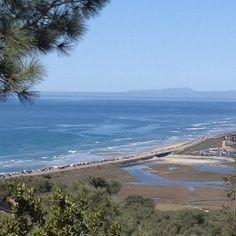 Torrey Pines beach Torrey Pines, Visit California, To Go, Spaces, World, Beach, Water, Travel, Outdoor
