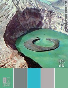 Horse Shoe | Color Blocks Design