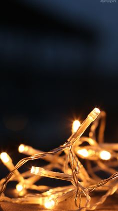 #fondodepantalla #minimalista #luces Dandelion, Plants, Minimalist Chic, Lights, Backgrounds, Dandelions, Plant, Taraxacum Officinale, Planets