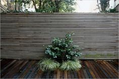 Like suprize outcroppings  Brownstone Modern Garden | The Modern Home