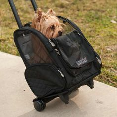 An approved airline dog, cat, and pet carrier that makes traveling with your pet easy with this 4-in-1 design. Converts into a backpack roller, car seat and pet bed, so you can bring your dog or cat just about anywhere.