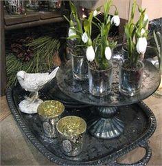 Mercury Glass Tealights & More   Nest  paper whites in mer. glass