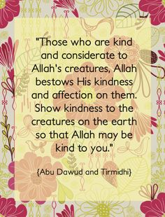 Please be kind to the others...