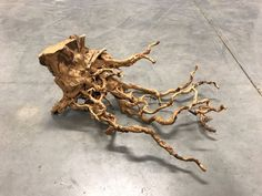 AIL02 Redmoor Wood -- driftwood shrimp moss discus manzanita spiderwood spider  #redmoorspiderwood