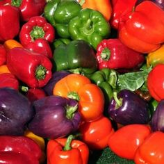 Growing peppers in your own home garden is easy and fun. They come in many varieties from mild bell peppers to flaming hot habaneros and everything...