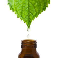 La trousse aromatique d'urgence. L'aromathérapie sera d'un véritable secours pour vous soulager des bobos du quotidien. Cette petite sélection d'huiles essentielles peut être la base de votre trousse d'urgence, à conserver à portée de la main à la maison, en vacances , au travail ......