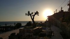 # Byblos  #Lebanon