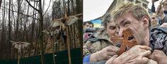 Ukraine, année zéro ? - 7 Lames la Mer #ukraine #kiev #crimee #russie #maidan #ianoukovitch #timochenko #poutine