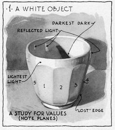 Gurney Journey: Sepia Wash Drawing. This white china cup is an ideal subject because its faceted sides make the stepwise transitions from light to shadow abundantly clear. All these steps can be carefully modulated with the washes, and the process is immensely faster than charcoal. Plus the tones are smoother and purer. But it takes practice to do such an accomplished study, since you have to lay down the tone and leave it: you can't scrub on it or tweak it forever.