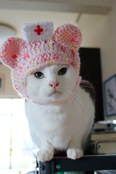 Nurse cat?Im here to prep you for your CatScan....