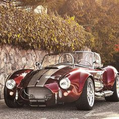 Tag someone who would like this cobra!