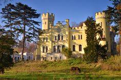 Pałac w stylu angielskiego neogotyku w Myśliborzu powstał w latach 1859 – 1861 dla Friedricha Wilhelma von Prittwitz und Gaffron, majora 50. regimentu dolnośląskiej landwehry, królewskiego szambelana i członka Izby Posłów, a także rycerza zakonu joannitów. Obecnie własność prywatna.