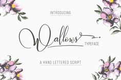 Wallows Typeface by banks on @creativemarket