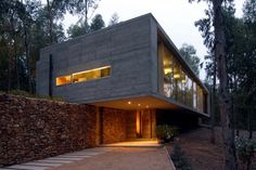 Modern flat roof house blends in harmoniously with the forest landscape