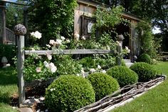 love the white roses & boxwood, wattle fence & twine balls on fence posts!