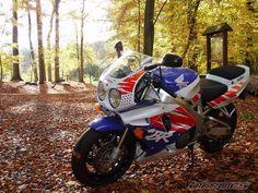 View photo of a 1992 Honda Cbr Fireblade. Motorcycle Logo, Cruiser Motorcycle, Honda Fireblade, Honda Motorbikes, Yamaha Yzf, Ducati, Japanese Motorcycle, Old Bikes, Honda Motorcycles