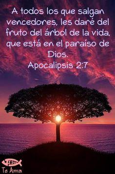 Apocalipsis 2:7 facebook.com/jesusteamamgaministries