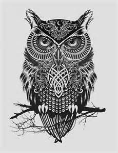 Owl drawing, Black and white owl drawing.