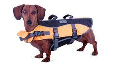 Kyjen Outward Hound Dog Life Jacket