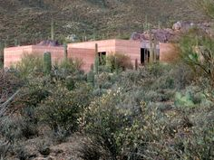 Rammed Earth Contracting - PureBuild