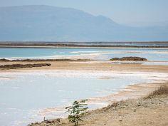 Dead Sea, southern area of Ein Bokek, Israel Dead Sea Israel, Sea Level, Southern, Ocean, Faith, World, Beach, Water, Outdoor