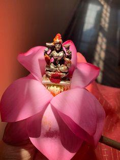 Kali Shiva, Durga Maa, Mandir Decoration, Classy Wallpaper, Navratri Images, Hindu Statues, Swami Samarth, Puja Room, Special Images