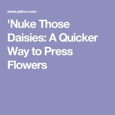 'Nuke Those Daisies: A Quicker Way to Press Flowers