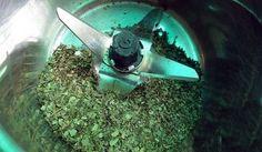 Cách làm bột trà xanh từ lá trà xanh tại nhà nhé, vừa đảm bảo chất lượng giá cực kỳ cạnh tranh. Zalo/Viber: 0938377990