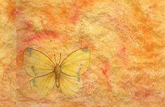 orange,rustic,background,orange,butterfly,yellow,grunge,parchment,