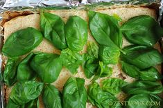 Caprese Sliders turn caprese salad (basil, tomato & mozz) into party food. Hawaiian Roll Sliders, Hawaiian Rolls, Hawain Roll Sandwiches, Caprese Salad, Spinach, Vegetarian, Vegetables, Recipes, Food