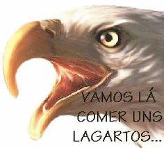 S.L. Benfica vs Sporting C.P.