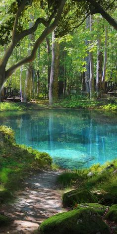 Beautiful, still blue/green pond 💚 Book Desire and Decorum 💙 - Choices: Stories You Play - Beautiful Nature Wallpaper, Beautiful Landscapes, Beautiful Gardens, Green Pond, Blue Green, Landscape Photography, Nature Photography, Nature Aesthetic, Travel Aesthetic