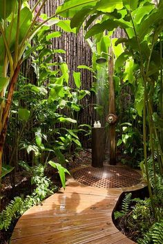 This Scenic Backyard Shower  For the summer days.