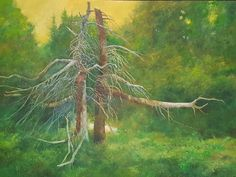Gerald Squires Prince Edward Island, New Brunswick, The Province, Newfoundland, Nova Scotia, East Coast, Creativity, Artists, House