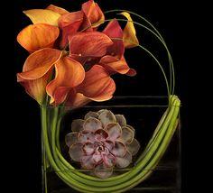 a modern Thanksgiving floral arrangement by Ovando Contemporary Flower Arrangements, Unique Flower Arrangements, Unique Flowers, Floral Centerpieces, Beautiful Flowers, Long Flowers, Centerpiece Ideas, Fall Flowers, Flowers Garden